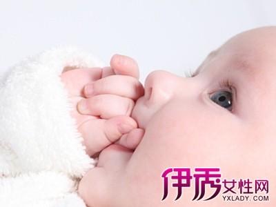 【新生儿吃钙好】【图】新生儿吃钙好莲藕陈皮排骨汤图片